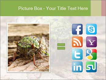 Green Cicada PowerPoint Template - Slide 21
