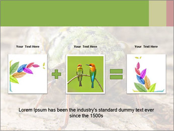 Green Cicada PowerPoint Template - Slide 22