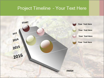 Green Cicada PowerPoint Template - Slide 26