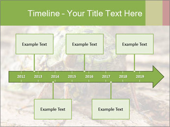 Green Cicada PowerPoint Template - Slide 28