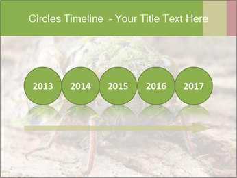 Green Cicada PowerPoint Template - Slide 29