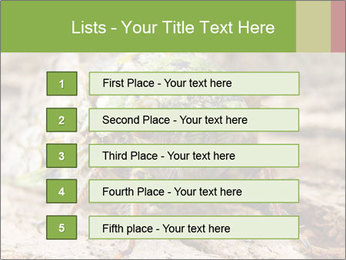 Green Cicada PowerPoint Template - Slide 3