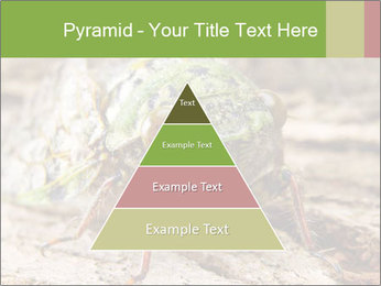 Green Cicada PowerPoint Template - Slide 30