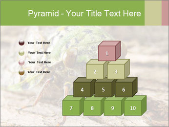 Green Cicada PowerPoint Template - Slide 31