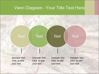 Green Cicada PowerPoint Template - Slide 32