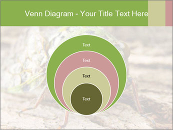 Green Cicada PowerPoint Template - Slide 34