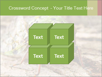 Green Cicada PowerPoint Template - Slide 39