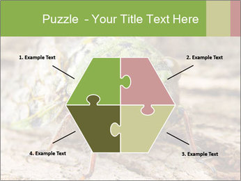 Green Cicada PowerPoint Template - Slide 40