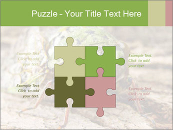 Green Cicada PowerPoint Template - Slide 43
