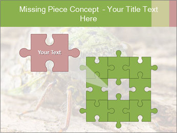 Green Cicada PowerPoint Template - Slide 45