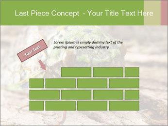 Green Cicada PowerPoint Template - Slide 46