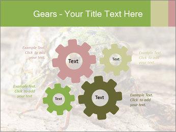 Green Cicada PowerPoint Template - Slide 47