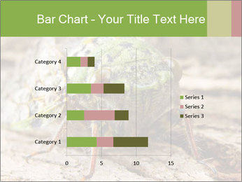 Green Cicada PowerPoint Template - Slide 52