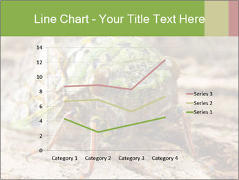 Green Cicada PowerPoint Template - Slide 54