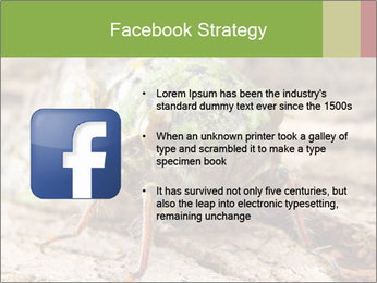 Green Cicada PowerPoint Template - Slide 6