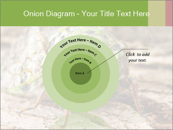 Green Cicada PowerPoint Template - Slide 61