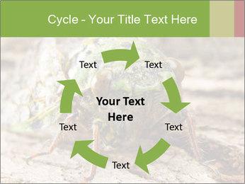 Green Cicada PowerPoint Template - Slide 62