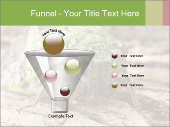 Green Cicada PowerPoint Template - Slide 63