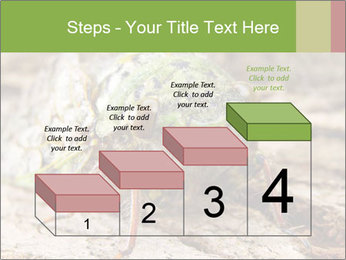 Green Cicada PowerPoint Template - Slide 64