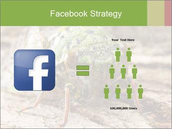 Green Cicada PowerPoint Template - Slide 7
