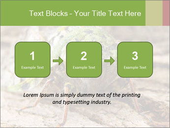 Green Cicada PowerPoint Template - Slide 71