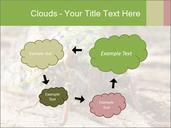 Green Cicada PowerPoint Template - Slide 72