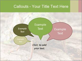 Green Cicada PowerPoint Template - Slide 73