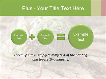 Green Cicada PowerPoint Template - Slide 75
