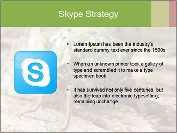 Green Cicada PowerPoint Template - Slide 8