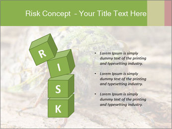Green Cicada PowerPoint Template - Slide 81
