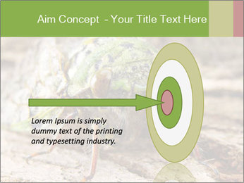 Green Cicada PowerPoint Template - Slide 83