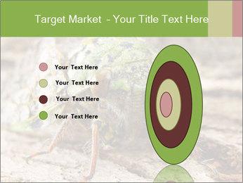 Green Cicada PowerPoint Template - Slide 84
