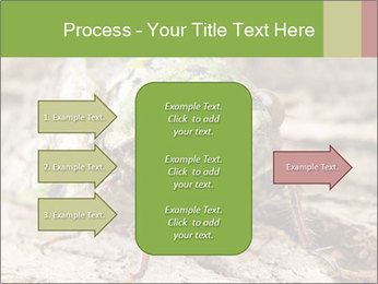 Green Cicada PowerPoint Template - Slide 85