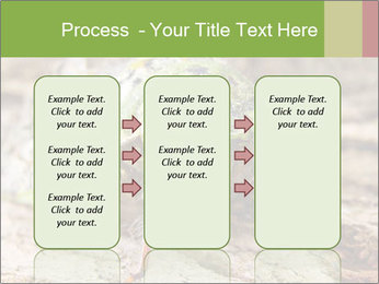 Green Cicada PowerPoint Template - Slide 86