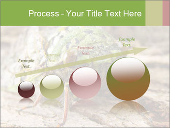 Green Cicada PowerPoint Template - Slide 87