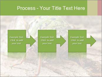 Green Cicada PowerPoint Template - Slide 88