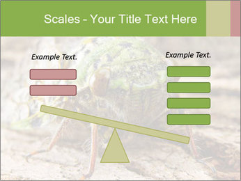 Green Cicada PowerPoint Template - Slide 89