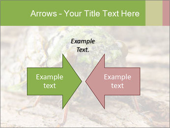 Green Cicada PowerPoint Template - Slide 90