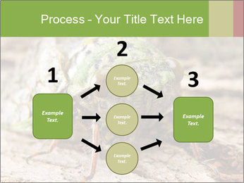 Green Cicada PowerPoint Template - Slide 92