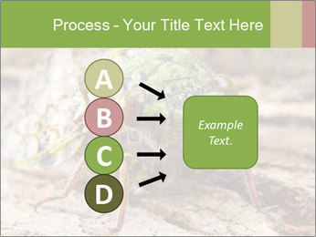 Green Cicada PowerPoint Template - Slide 94
