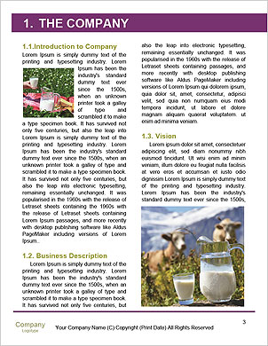 0000093349 Word Template - Page 3