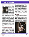 0000093353 Word Template - Page 3