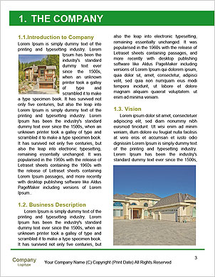 0000093358 Word Template - Page 3