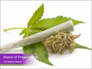 Cannabis PowerPoint Templates