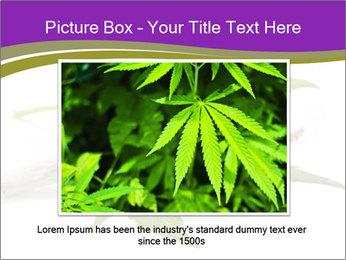 Cannabis PowerPoint Templates - Slide 15
