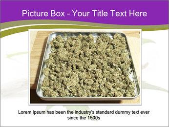 Cannabis PowerPoint Templates - Slide 16