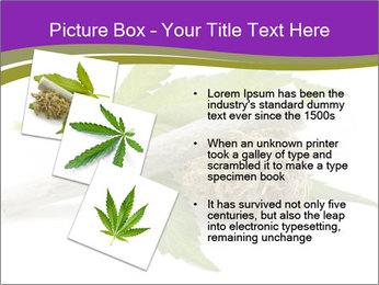 Cannabis PowerPoint Templates - Slide 17