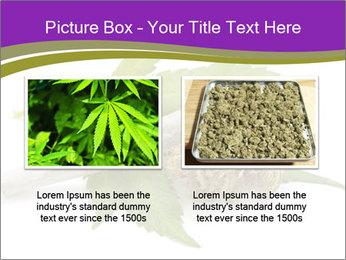 Cannabis PowerPoint Templates - Slide 18