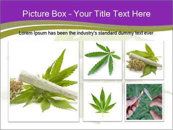 Cannabis PowerPoint Templates - Slide 19