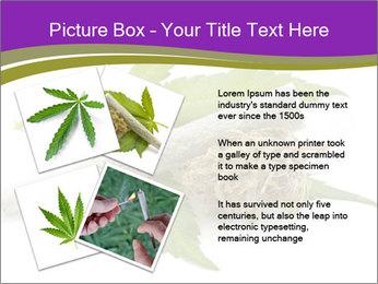 Cannabis PowerPoint Templates - Slide 23